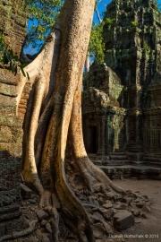 Angkor Wat-64