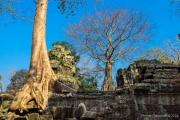 Angkor Wat-65