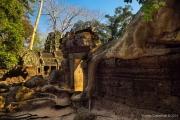 Angkor Wat-62