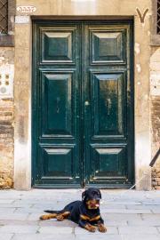 Doors Venice to Santorini-8