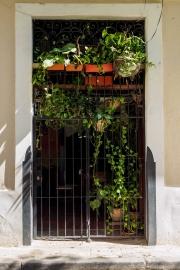 Doors of Cuba-19