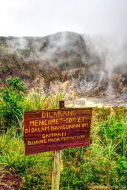 Sulawesi HDR-6