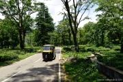 Himachal Pradesh-23