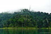 Khao Sok Nationalpark-33