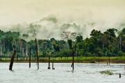 Khao Sok Nationalpark-35