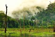 Khao Sok Nationalpark-37