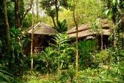 Khao Sok Nationalpark-6