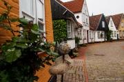 Schleswig Holstein-5