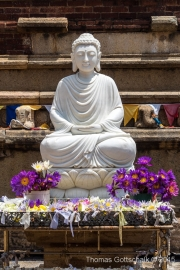Sri Lanka-34.jpg