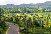 Sri Lanka-60.jpg