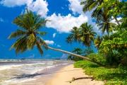 Sri Lanka-102.jpg