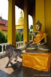 Northern Thailand-20
