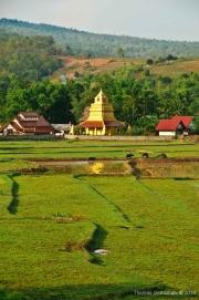 Northern Thailand-31