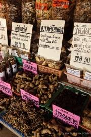 Northern Thailand-60