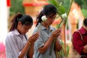 Thai Temple-65